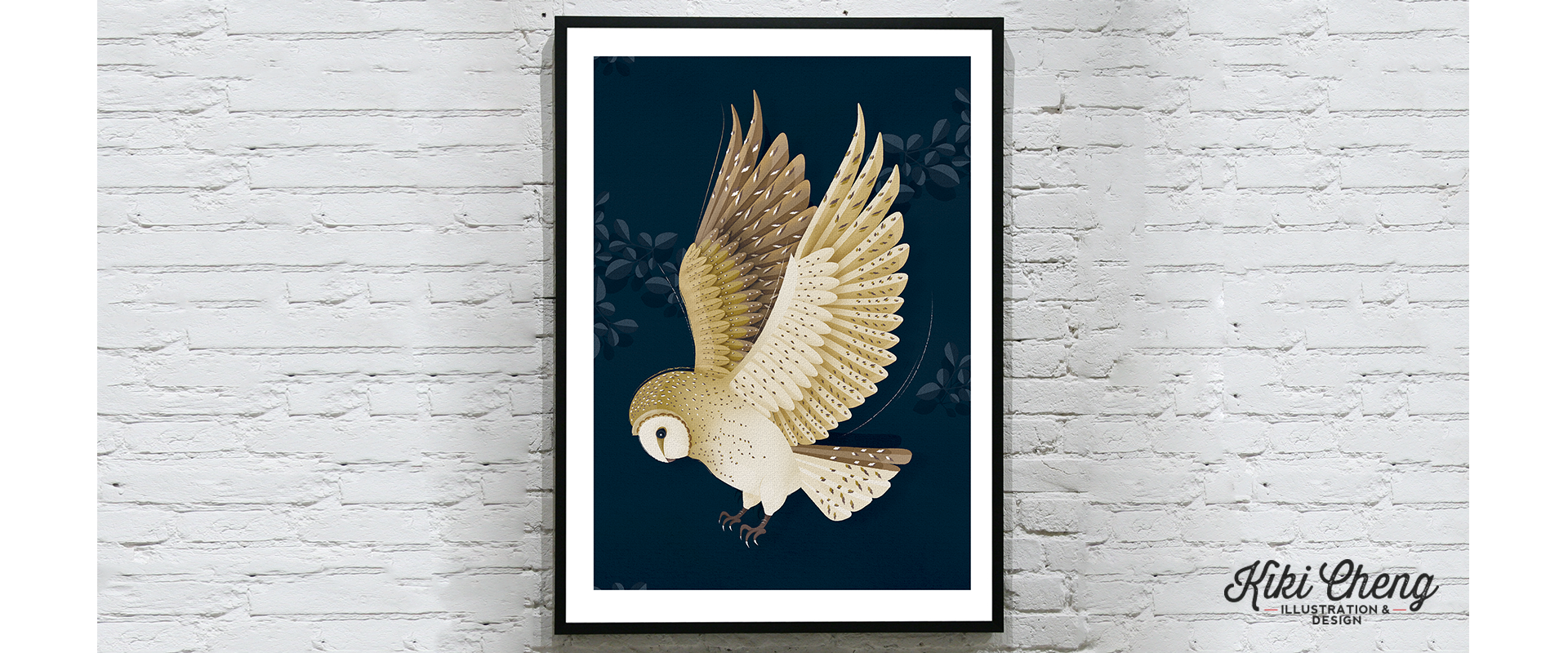 Owl Collection: Barn Owl